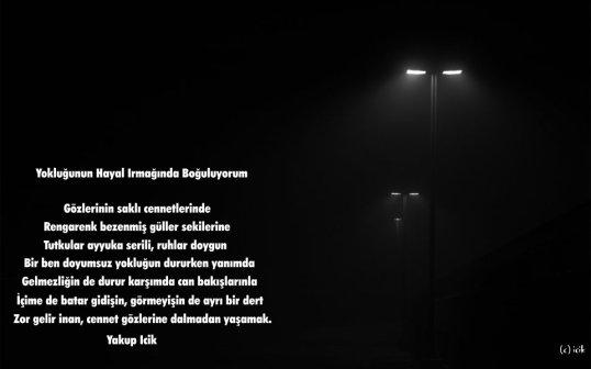 www_antoloji_com_1939718_220