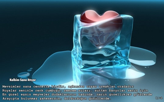 www_antoloji_com_2265770_576